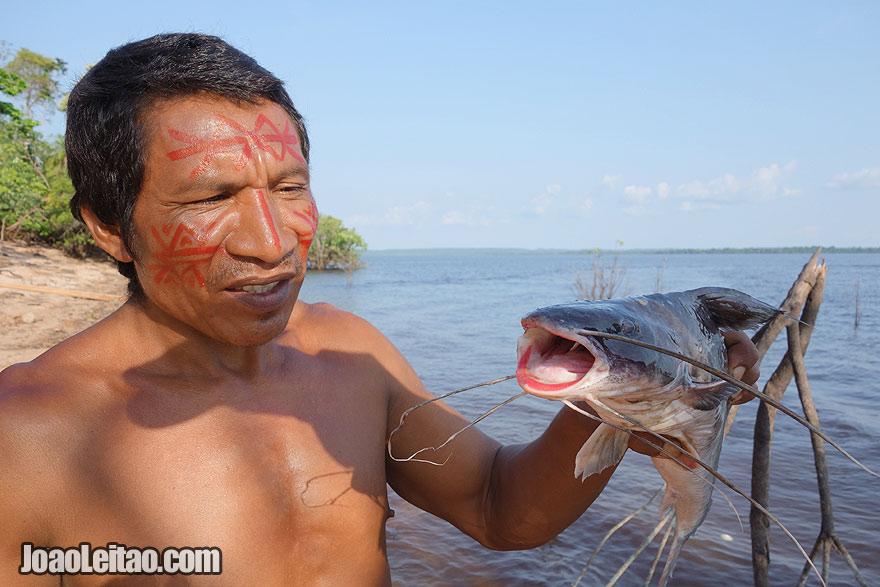 Pesca do peixe Pirarara no Amazonas