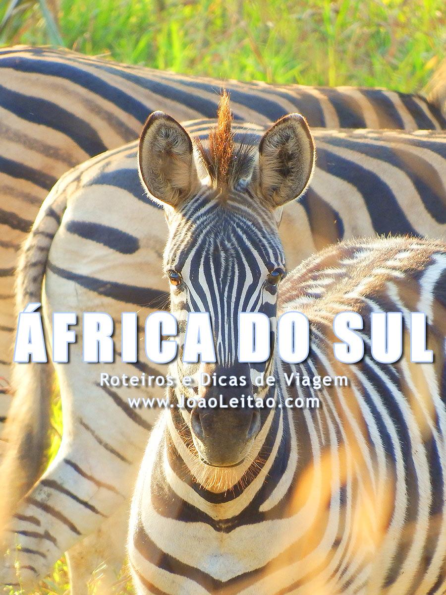Visitar África do Sul – Roteiros e Dicas de Viagem