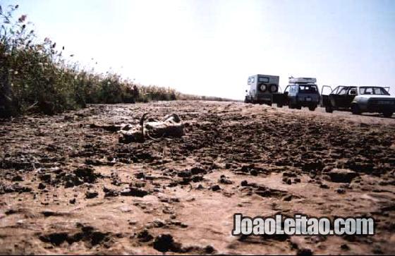 Parque Diawling na Mauritania mesmo na fronteira com o Senegal