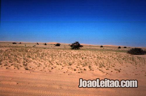Parque Nacional do Banco de Arguim