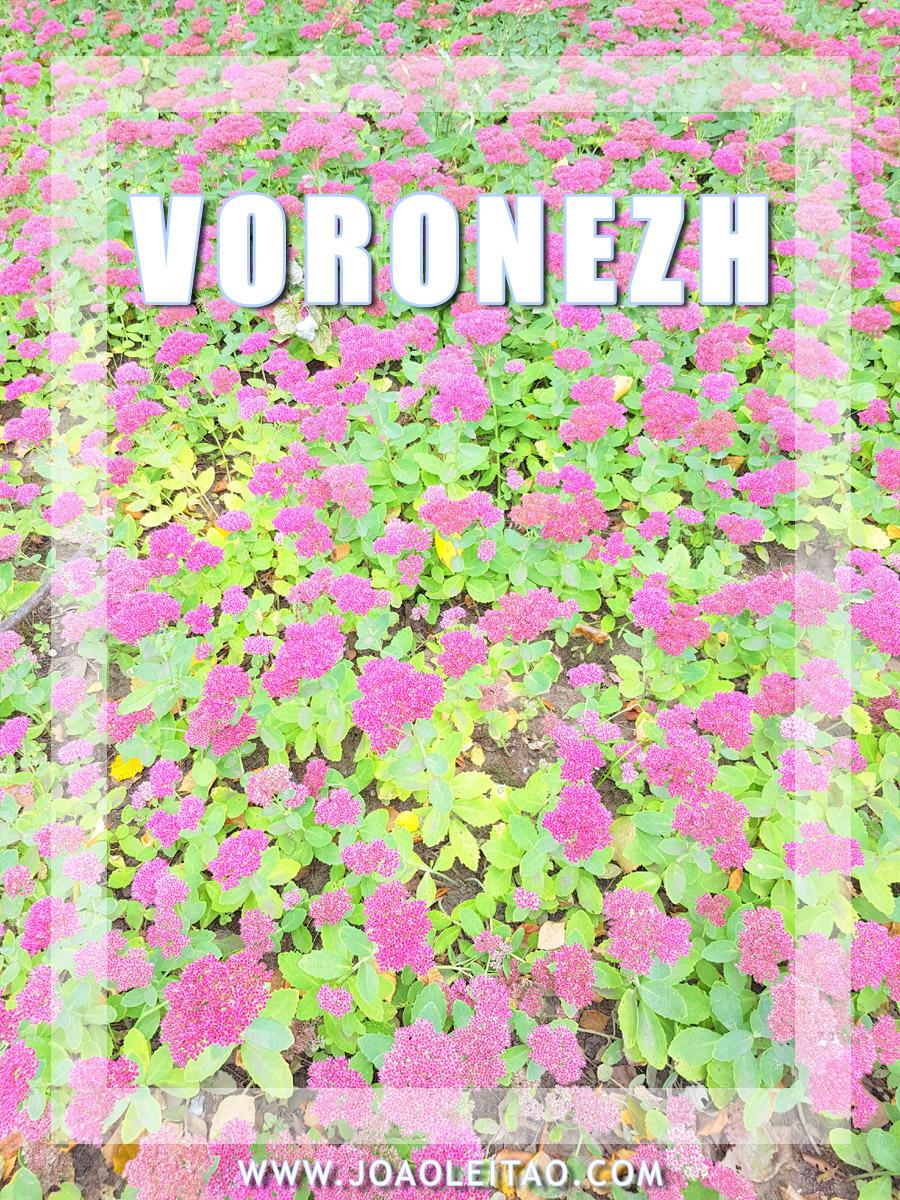 VISITAR VORONEZH