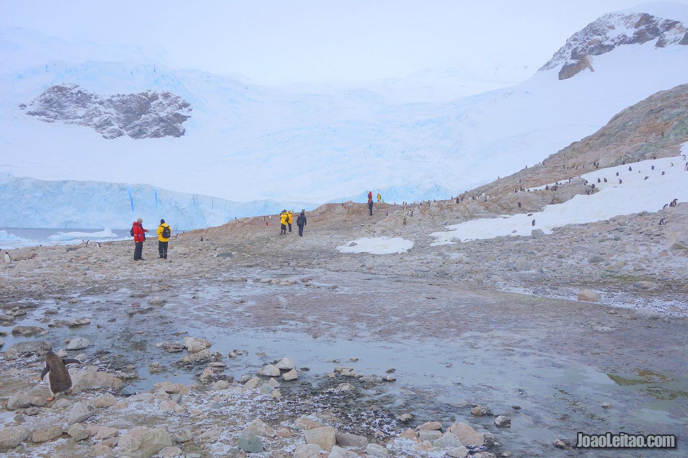 Caminhar num Glaciar na Antártida