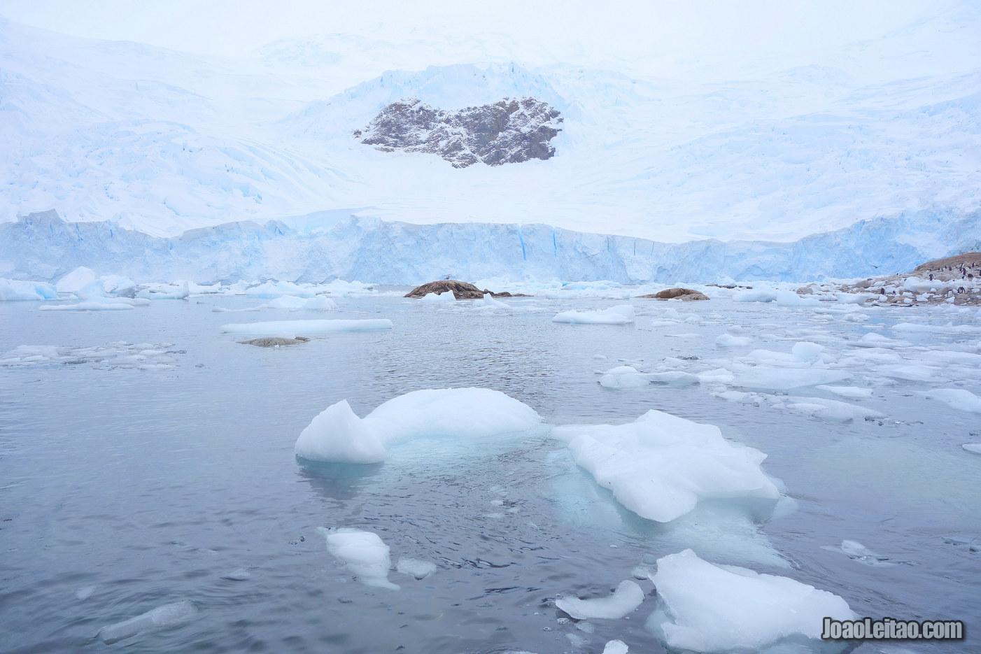 Escutar o Silêncio na Antártida