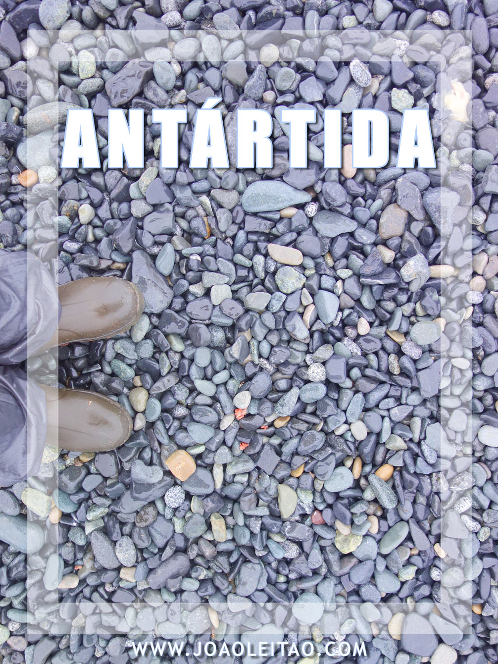 ILHA HALF MOON ANTARTIDA