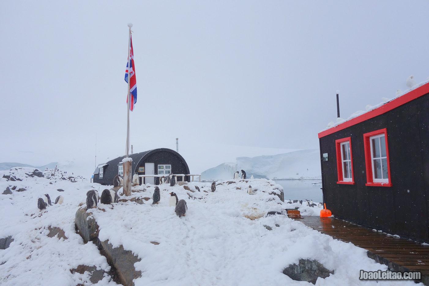 Visitar a Antártida - 17 Locais maravilhosos a não perder 3