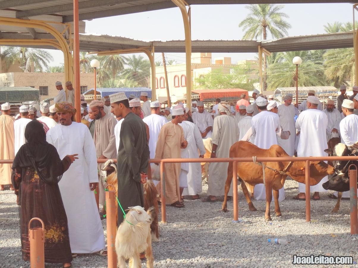 Visitar Nizwa, Omã: Roteiro e Guia Prático de Viagem 11