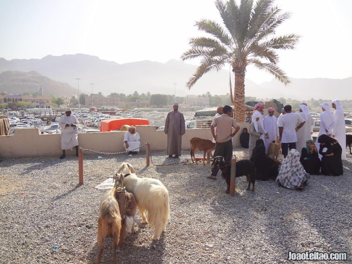 Visitar Nizwa, Omã: Roteiro e Guia Prático de Viagem 14