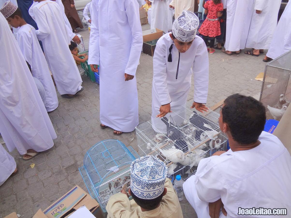 Visitar Nizwa, Omã: Roteiro e Guia Prático de Viagem 4