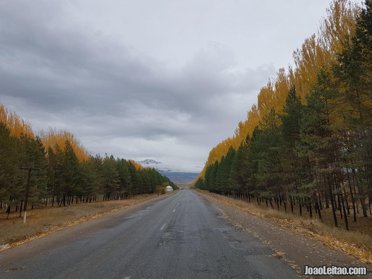 O que fazer em Talas no Quirguistão 4