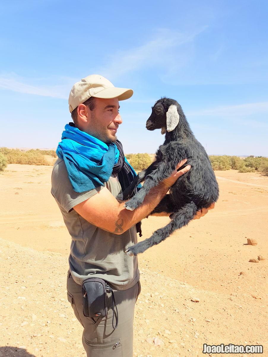 Marrocos • Guia de Viagem • O que Visitar em Marrocos 36