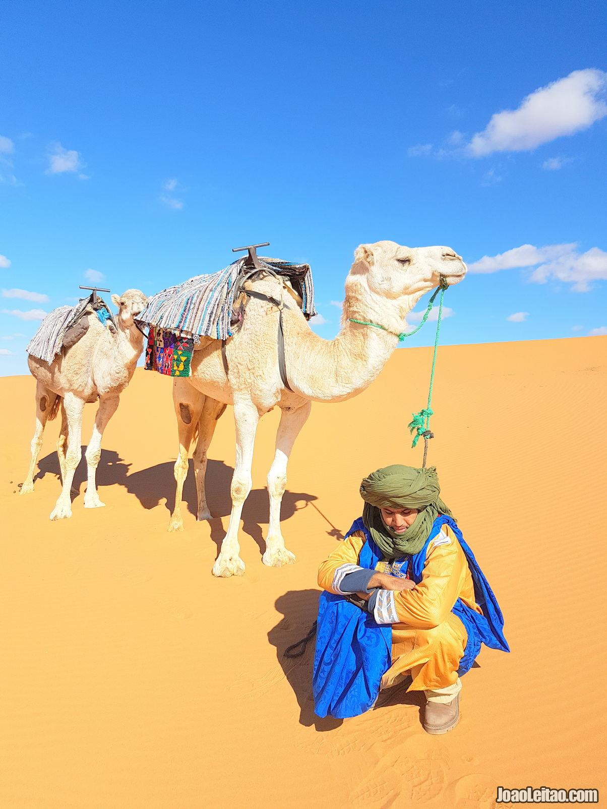 Marrocos • Guia de Viagem • O que Visitar em Marrocos 6