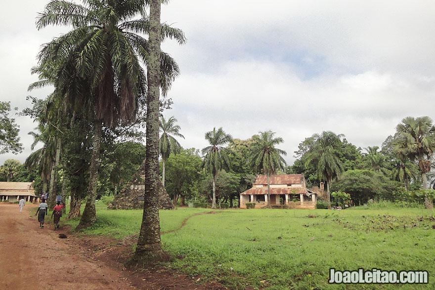 Visitar Faradje no Congo