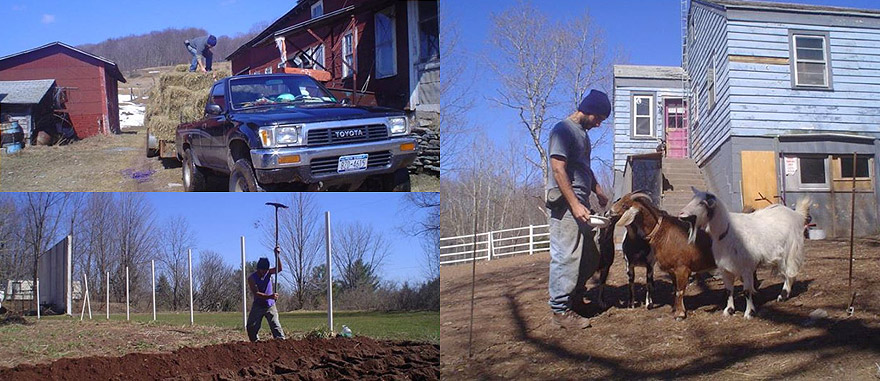 Working on a Farm in up State New York