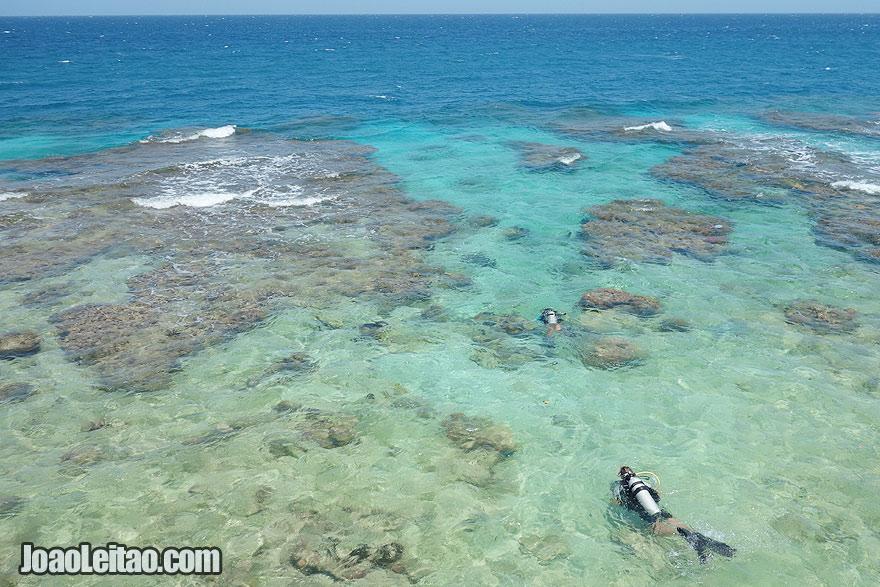 Visit Utila Island Honduras