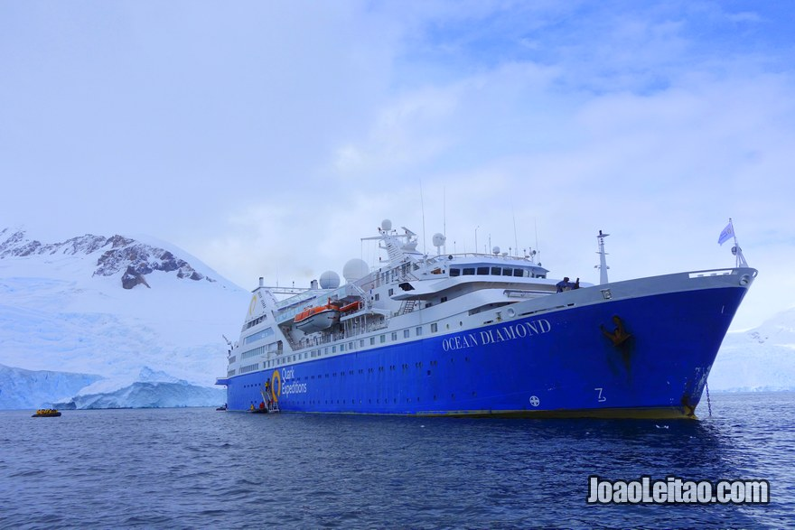 Last Minute Cruise to Antarctica