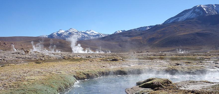 Visit El Tatio Geysers in Chile