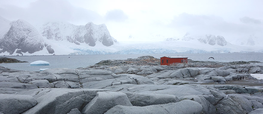 Visit Pettermann Island - Antarctica Travel Guide