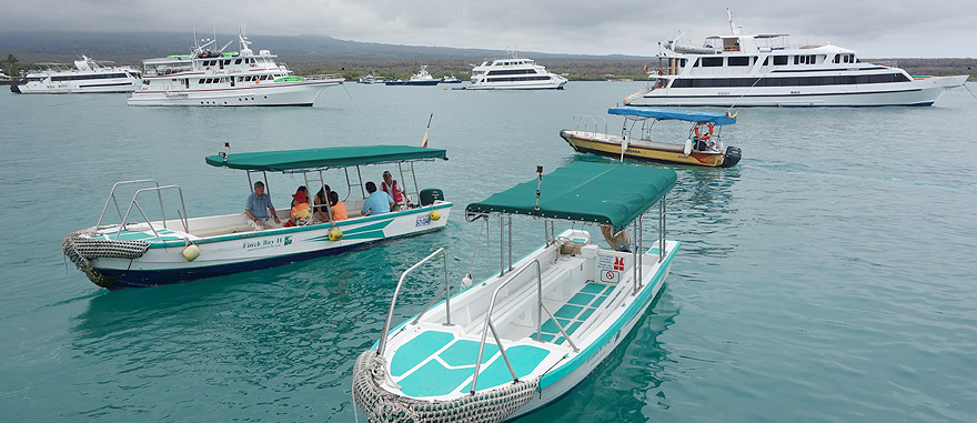Boats Puerto Ayora Galapagos