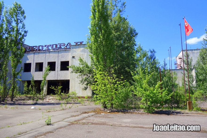 Wildlife Spotting - Chernobyl Tour
