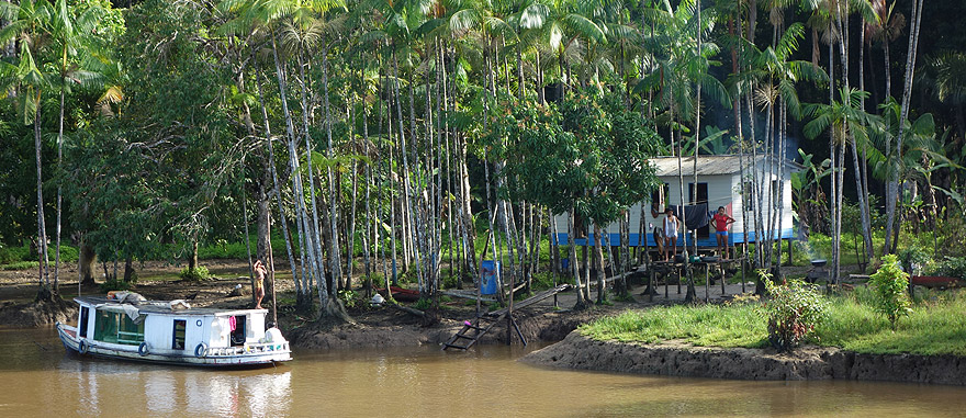 House in the Amazon River