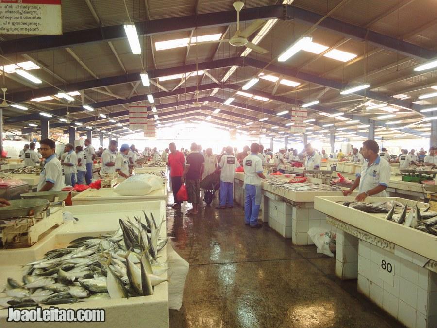 Visit Deira Fish Market United Arab Emirates