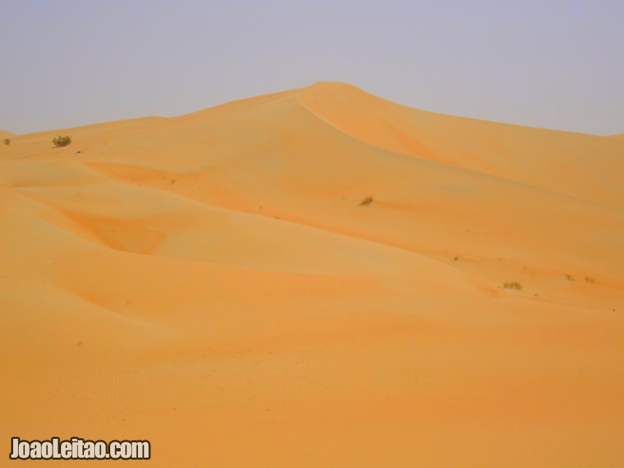 Visit Rub al Khali Desert United Arab Emirates