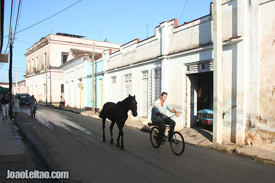 Horse and man on bicycle in Remedios