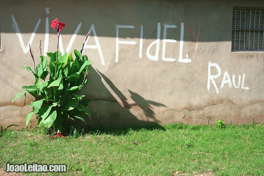 Viva Fidel and Raul script with red flower