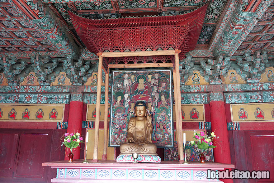 The Woljong Temple is arguably the most impressive Buddhist temple in North Korea. Wooden architecture and murals dating from the ninth century. I had the opportunity to have a private Buddhist ceremony given by the monk who takes care of the temple. Fascinating place.