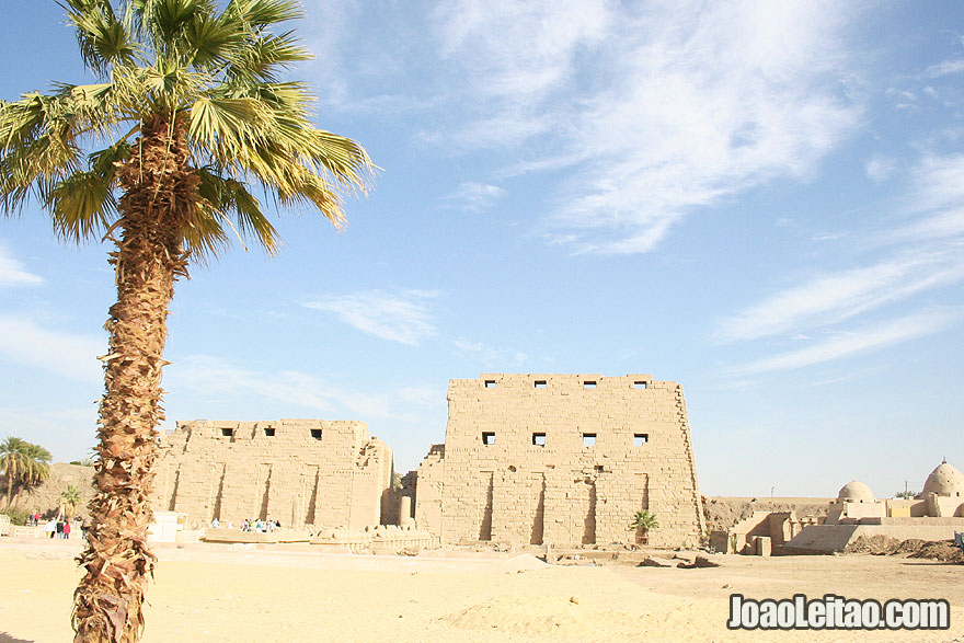 Karnak Temple and palm tree in Luxor