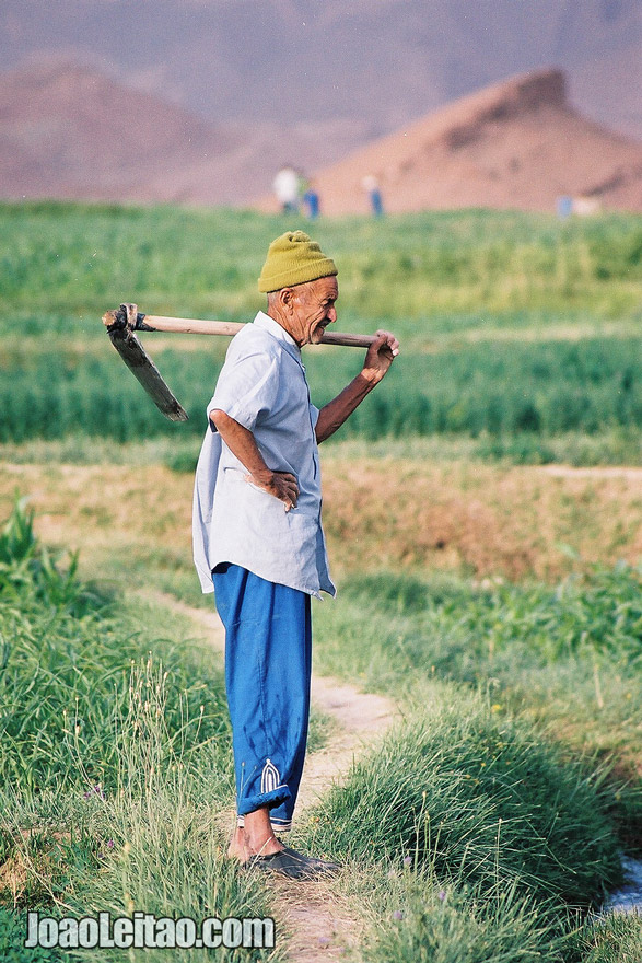 Photo of man working on the fields of Tamtettoucht in the Atlas Mountains, Morocco
