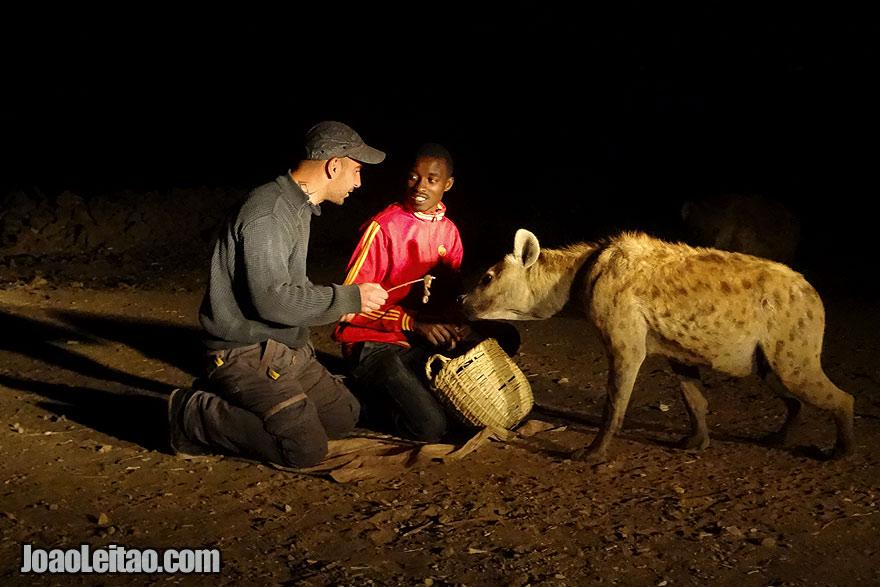 Feeding Hyenas in Ethiopia