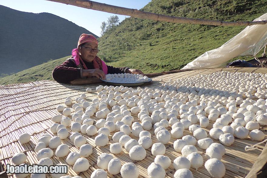 Lady preparing the Kyrgyz kurut cheese