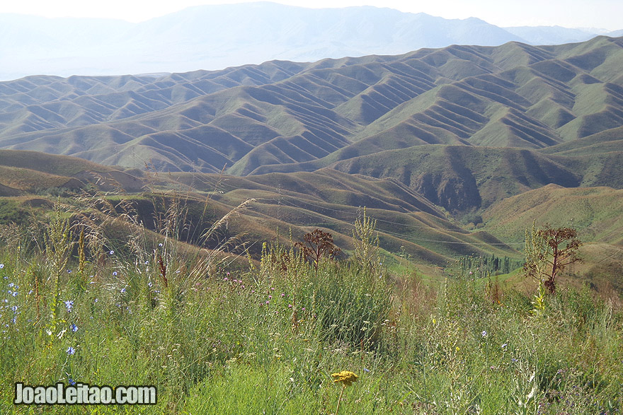 Cordilheira de Fergana no Quirguistão