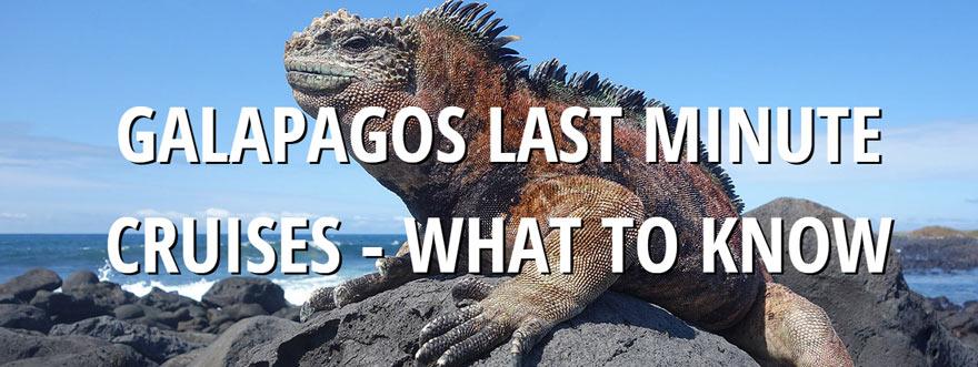 Travel Galapagos Blog