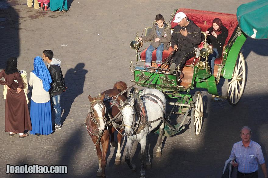 Charretes de cavalos em Marraquexe