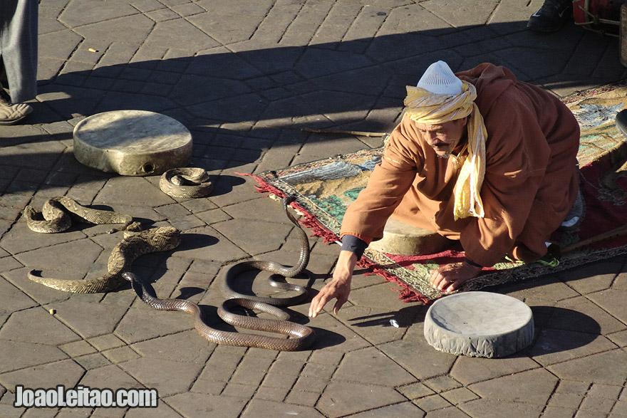 Encantadores de serpentes de Marraquexe