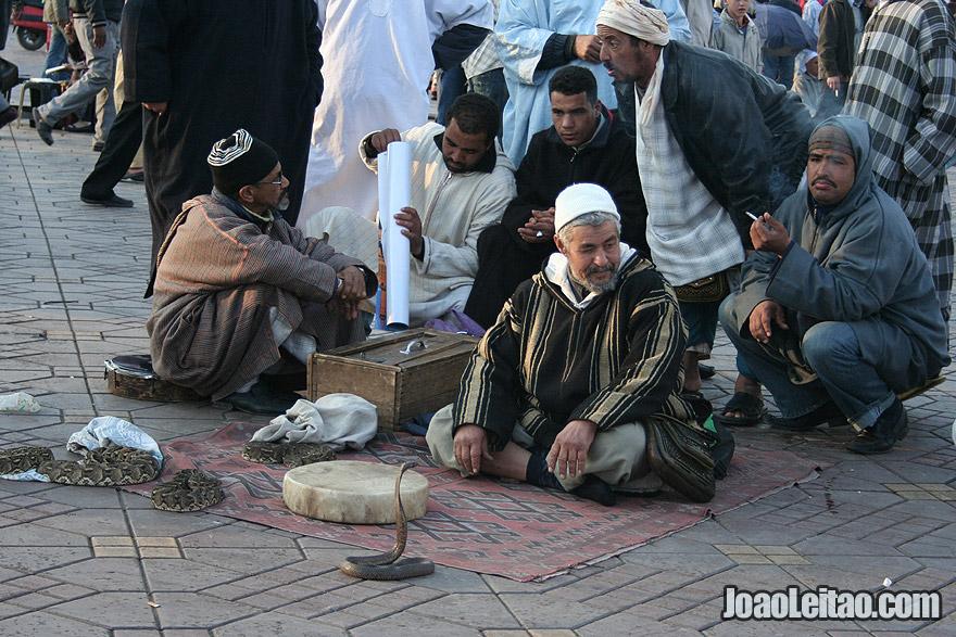 Encantadores de serpentes em Marraquexe