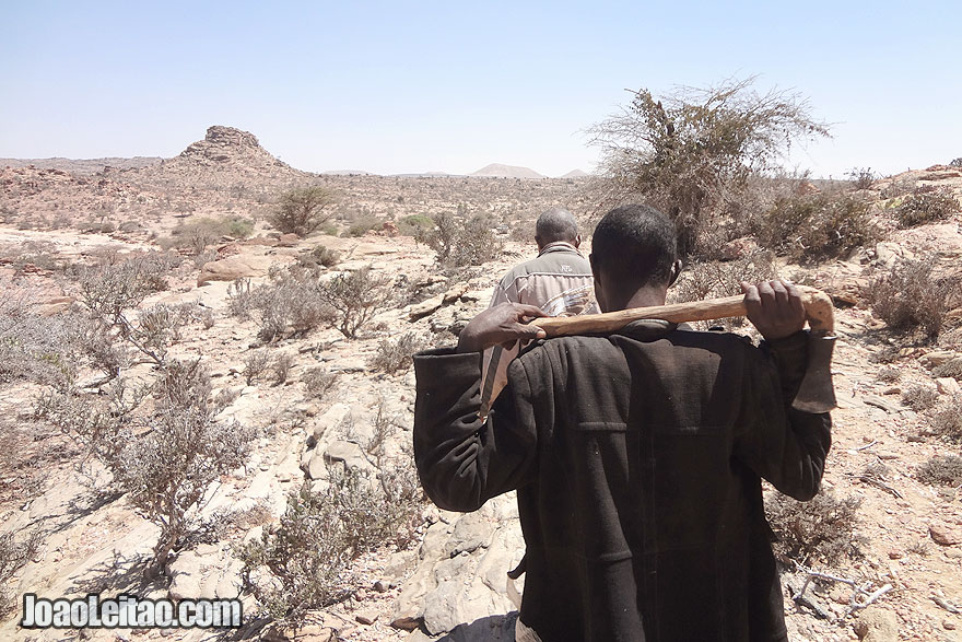 What to visit in Somaliland - Laas Geel