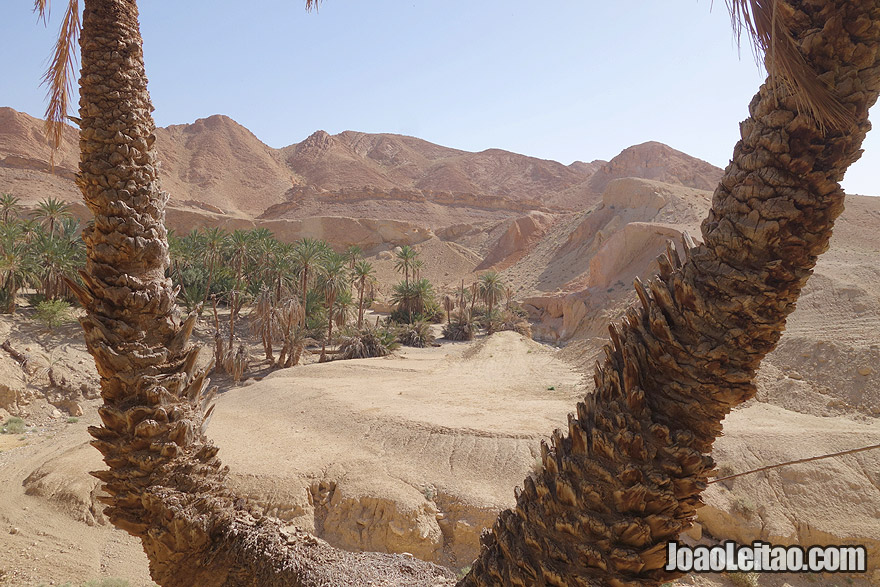 Visita Tunisia