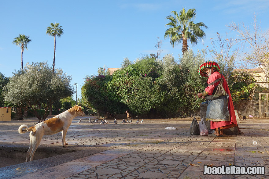 Water seller in Marrakesh