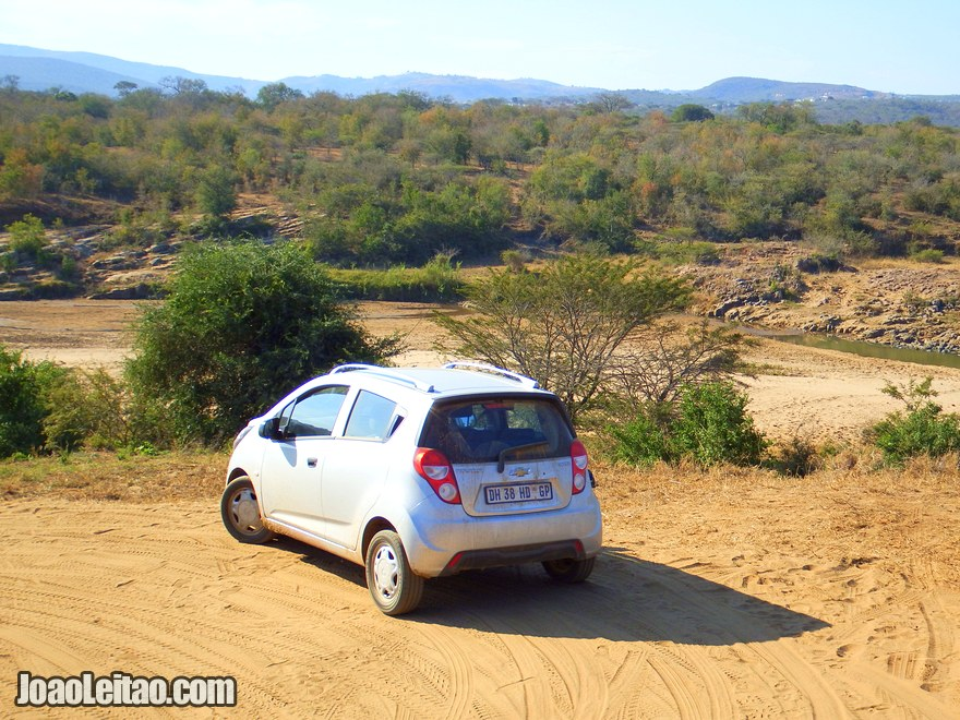 Ultimate Guide to Self-Drive Safaris in South Africa Parks & Game Reserves