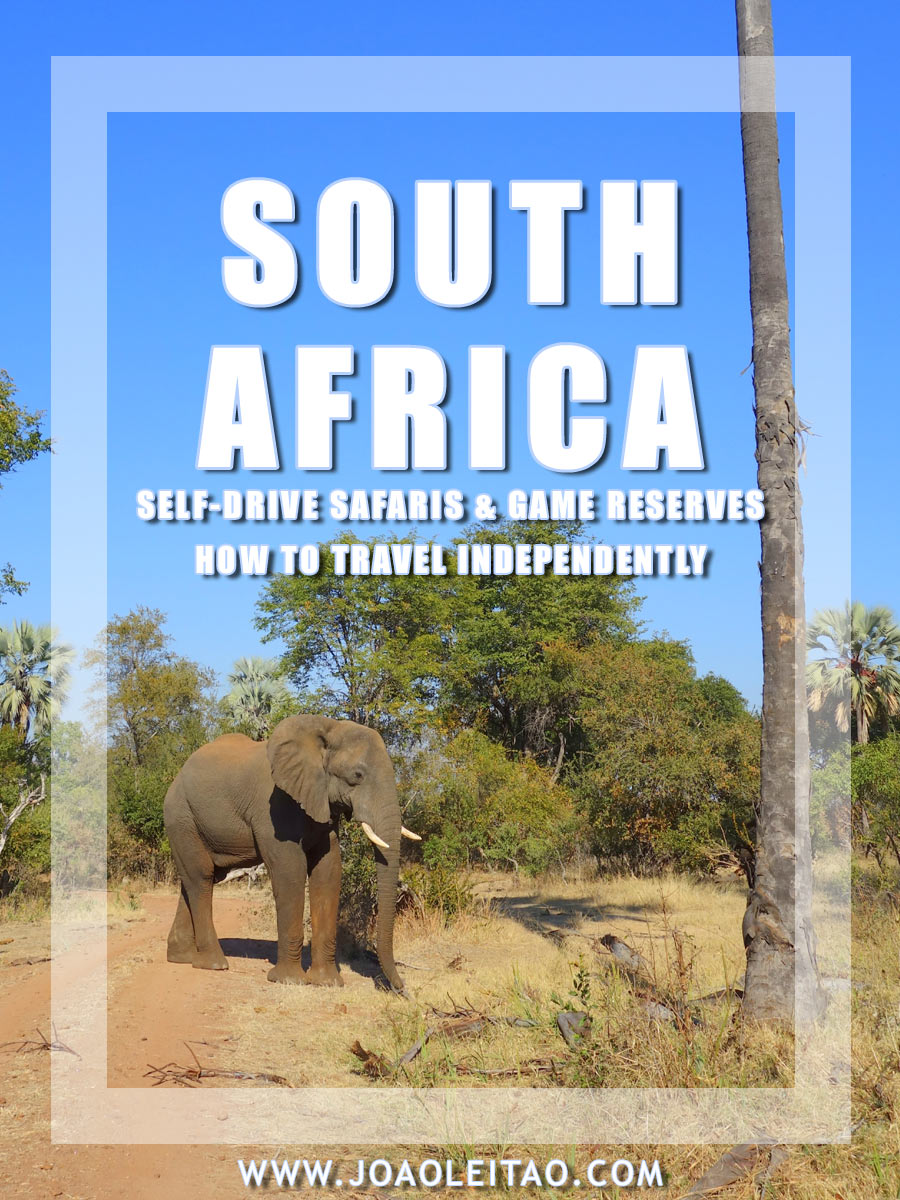 Self-Drive Safaris in South Africa Parks & Game Reserves - How to Travel Independently