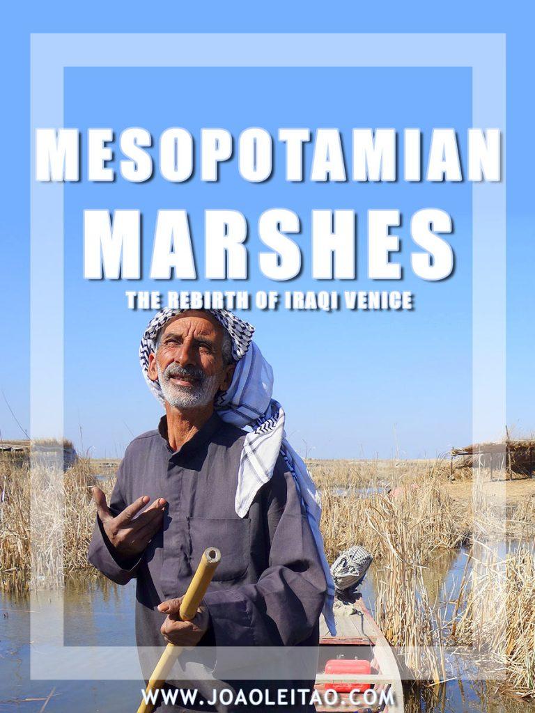 Mesopotamian marshes, The rebirth of Iraqi Venice