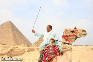 Pyramid of Cheops and Egyptian man riding a camel