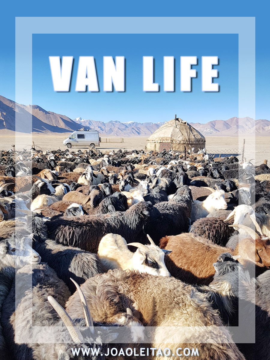VAN LIFE