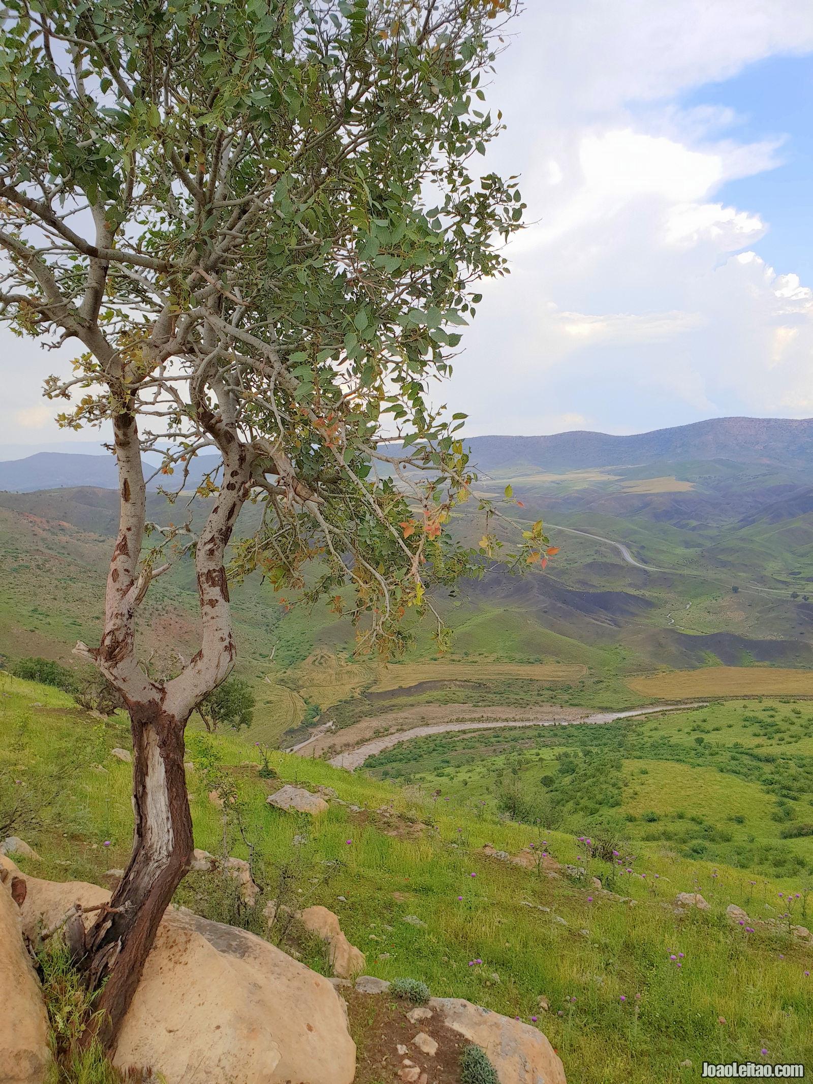 DWIN CASTLE IRAQ