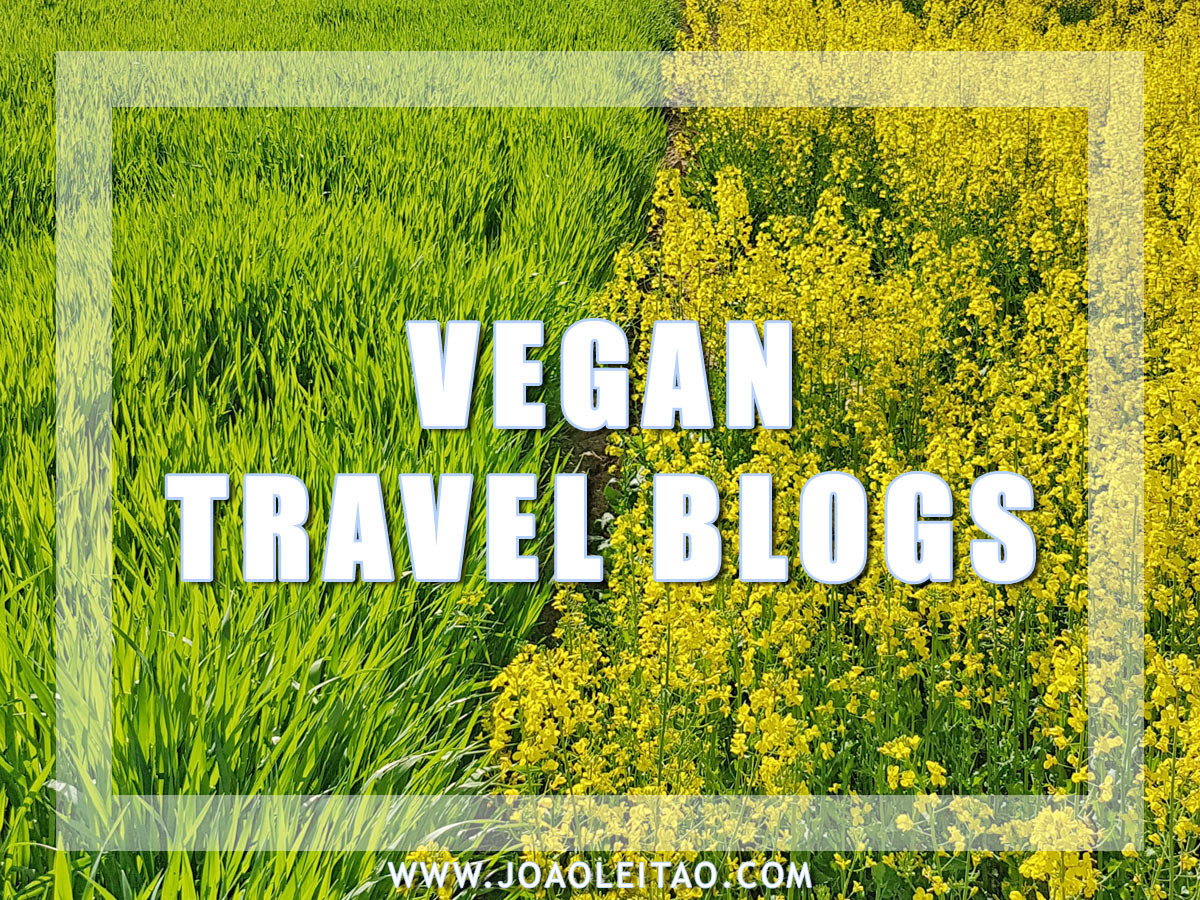 VEGAN TRAVEL BLOGS