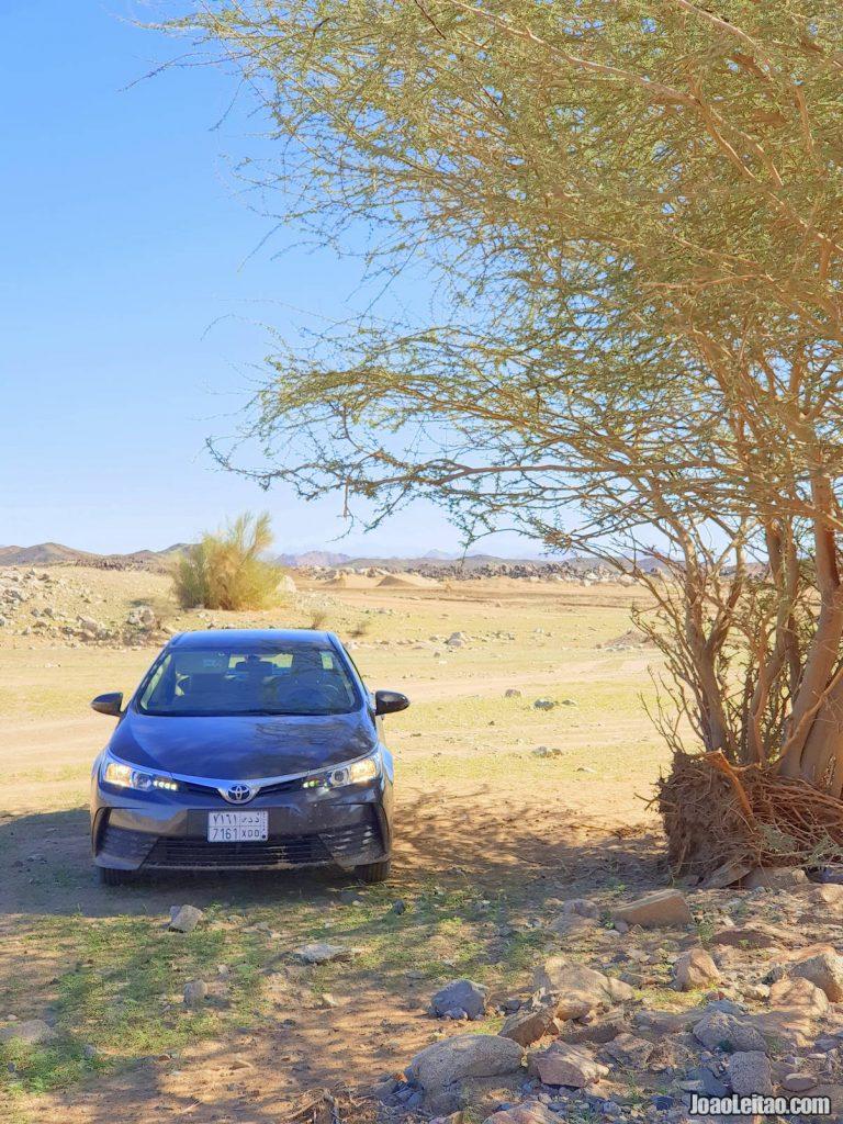 Roteiro de 15 Dias de Carro na Arábia Saudita » Jidá a Riade 2