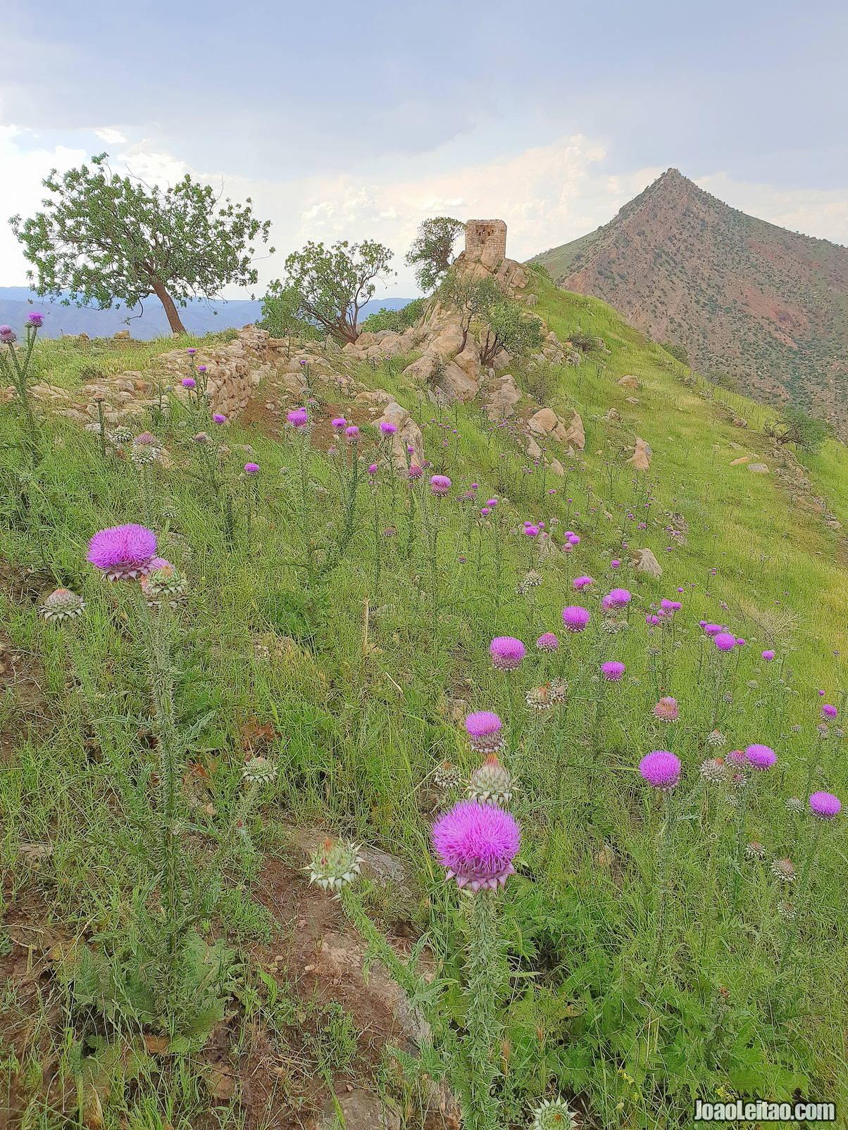 Visit Dwin Castle in Iraqi Kurdistan